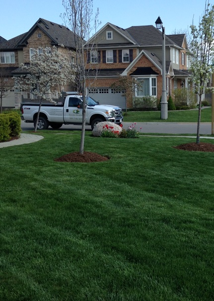 grounds maintenance company based in Stoney Creek Ontario
